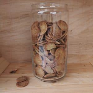 Biscuits au poireau