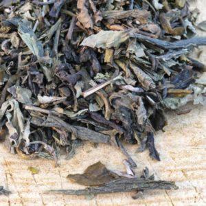 Thé vert fraîcheur Méditerranée